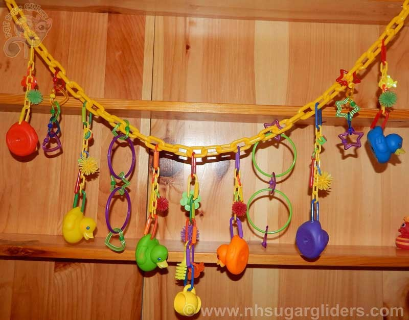 Ducky Dangler Chain - Rainbow Brights